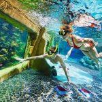 Aqua Mundo koraalzwembad De kempervennen