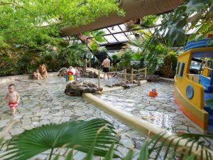 Subtropisch zwembad de Huttenheugte
